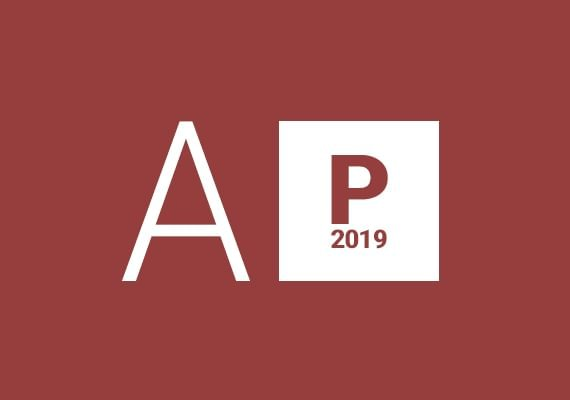 Access Professional 2019