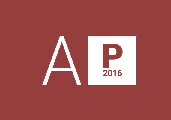 Access Professional 2016