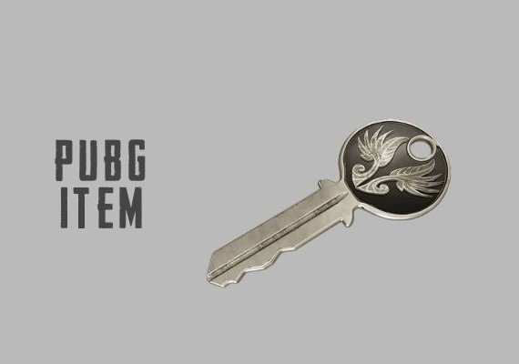 PUBG PlayerUnknown's Battlegrounds: Early Bird Key