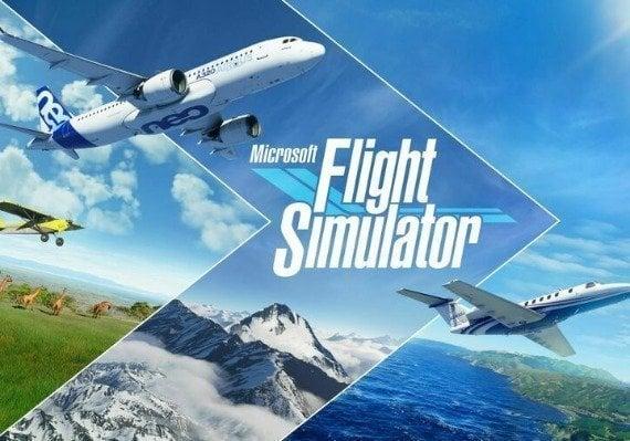 Microsoft Flight Simulator US