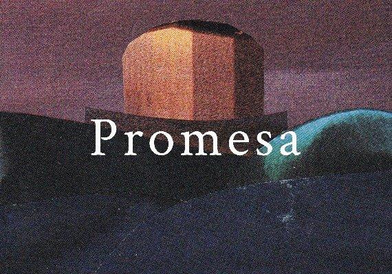 Promesa ARG